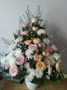 Bunga Meja Lampung